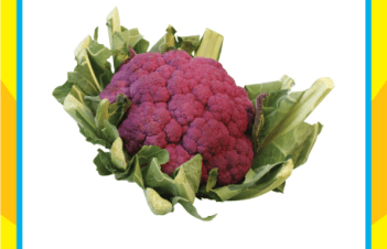 Is Cauliflower Supposed To Be Purple