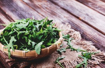 How To Plant And Care For Arugula