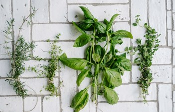Where To Buy Dried Parsley Uk