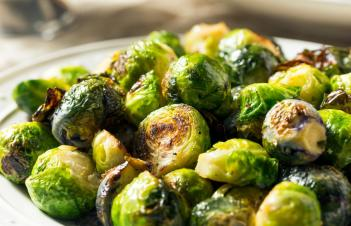 When To Plant Brussel Sprouts In Nc